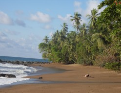 SDC10525_Costa-Rica.jpg