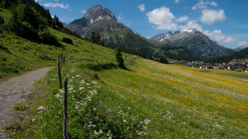 JDancy-Austria-Web-4